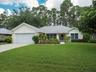 Palm Coast Single Family Home For Sale: 24 Ethan Allen Drive