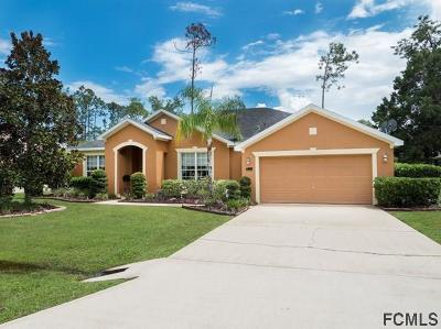 Palm Coast Single Family Home For Sale: 10 Burning Sands Lane