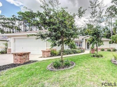 Palm Coast Single Family Home For Sale: 14 Botany Lane
