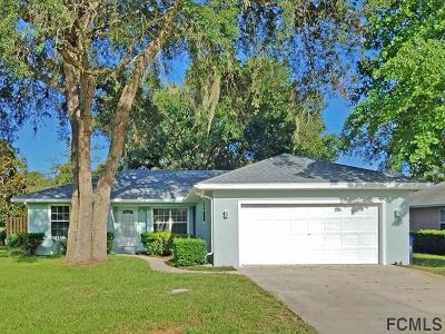 St Augustine Single Family Home For Sale: 691 Aleida Drive