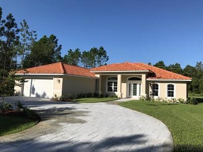Palm Coast Single Family Home For Sale: 60 Felwood Lane