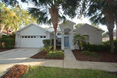 Palm Coast Single Family Home For Sale: 7 St Andrews Court