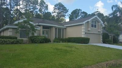 Palm Coast Single Family Home For Sale: 30 Raleigh Drive