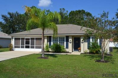Palm Coast Single Family Home For Sale: 17 Pinto Lane
