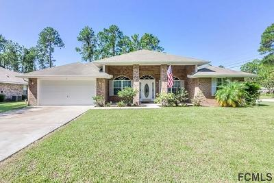 Palm Coast Single Family Home For Sale: 2 Llacer Place