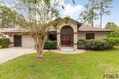 Palm Coast Single Family Home For Sale: 2 Washwick Place