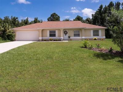 Palm Coast Single Family Home For Sale: 20 Biscayne Dr