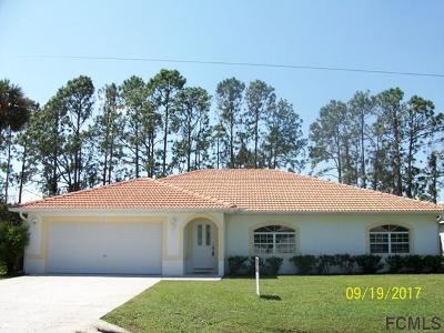 Palm Coast Single Family Home For Sale: 25 Providence Lane