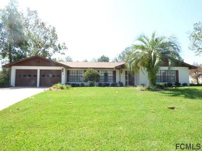 Palm Coast Single Family Home For Sale: 13 Blaine Dr