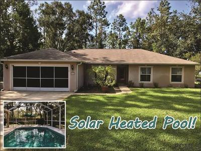 Pine Grove Single Family Home For Sale: 91 Piedmont Drive