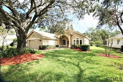 Ormond Beach Single Family Home For Sale: 435 Long Cove Road