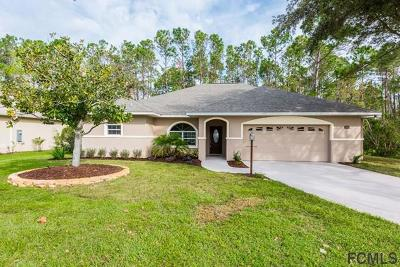 Palm Coast Single Family Home For Sale: 15 Wilmart Place