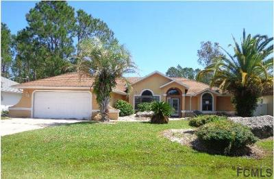 Palm Coast Single Family Home For Sale: 11 Fallon Lane