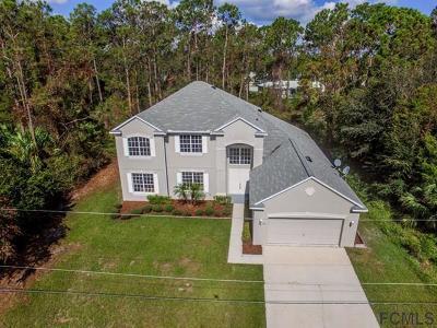 Palm Coast Single Family Home For Sale: 47 President Lane