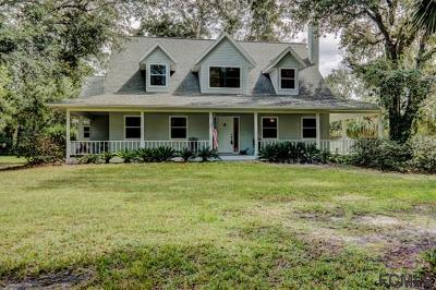 Bunnell Single Family Home For Sale: 1391 Lake Disston Dr