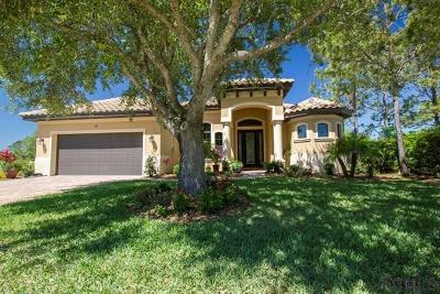 Palm Coast Single Family Home For Sale: 29 North Lakewalk Dr