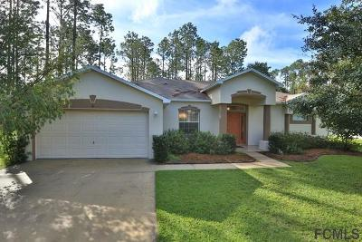 Palm Coast Single Family Home For Sale: 56 Bird Of Paradise Dr
