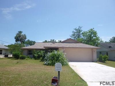 Palm Coast Single Family Home For Sale: 62 Patric Dr