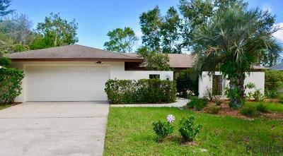 Palm Coast Single Family Home For Sale: 8 Patuxent Pl