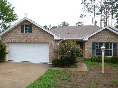 Palm Coast Single Family Home For Sale: 2 Llowick Court