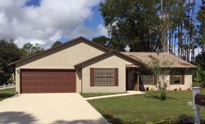 Palm Coast Single Family Home For Sale: 151 Bressler Lane