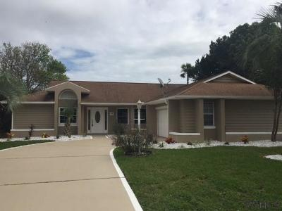 Palm Coast Single Family Home For Sale: 41 Colonial Ct
