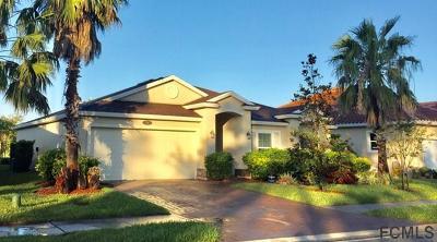 Palm Coast Single Family Home For Sale: 74 Arena Lake Dr