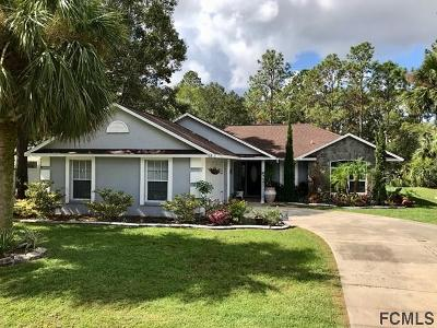 Palm Coast Single Family Home For Sale: 63 White Star Drive