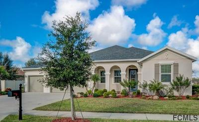 Palm Coast Single Family Home For Sale: 111 South Coopers Hawk Way
