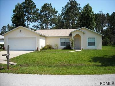 Palm Coast Single Family Home For Sale: 31 Raleigh Drive