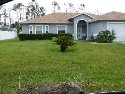 Palm Coast Single Family Home For Sale: 33 Rolling Sands Drive