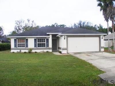 Palm Coast Single Family Home For Sale: 60 Langdon Drive