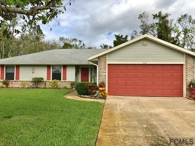 Ormond Beach Single Family Home For Sale: 557 Sandy Oaks Blvd