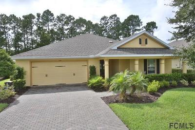Ormond Beach Single Family Home For Sale: 679 Elk River Drive
