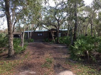 Palm Coast Single Family Home For Sale: 22 Wildwood Dr
