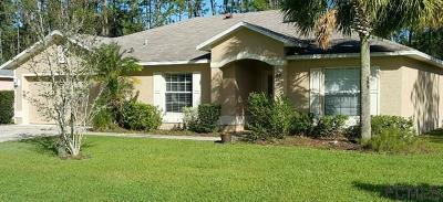 Palm Coast Single Family Home For Sale: 44 Reybury Lane