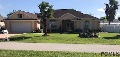 Palm Coast Single Family Home For Sale: 30 Lewis Dr
