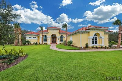 Hammock Beach Single Family Home For Sale: 47 Ocean Oaks Ln