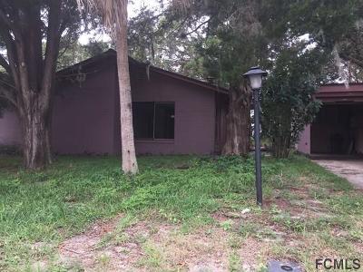 Palm Coast Single Family Home For Sale: 26 Florida Park Dr