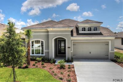 Ormond Beach Single Family Home For Sale: 622 Elk River Drive