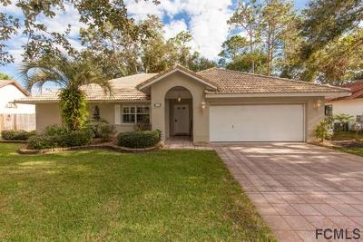 Palm Coast Single Family Home For Sale: 42 Wedge Lane