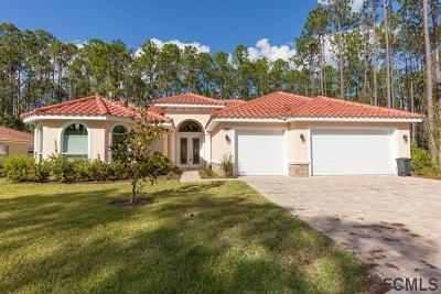 Palm Coast Single Family Home For Sale: 38 Edward Dr