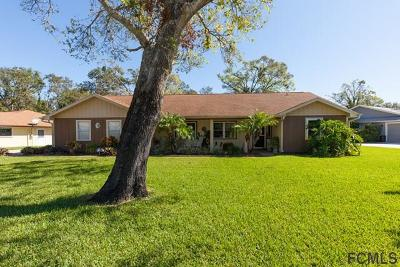 Ormond Beach Single Family Home For Sale: 1113 Wandering Oaks Dr