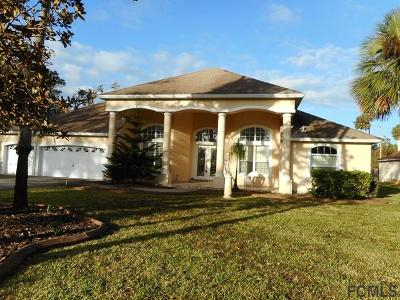Flagler Beach Single Family Home For Sale: 1255 Lambert Ave