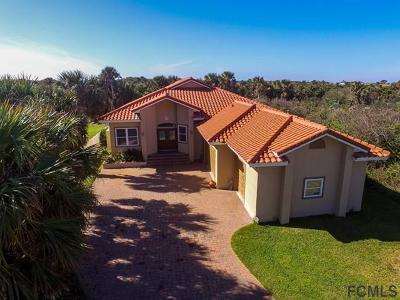 Flagler Beach Single Family Home For Sale: 3402 Ocean Shore Blvd N