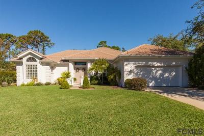 Ormond Beach Single Family Home For Sale: 802 Millstream Lane