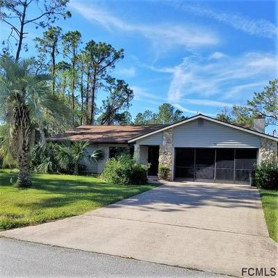 Palm Coast Single Family Home For Sale: 53 Point Pleasant Drive