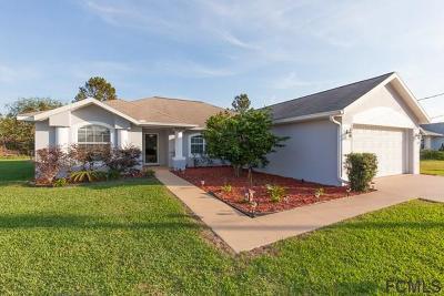 Palm Coast Single Family Home For Sale: 24 Big Bear Ln