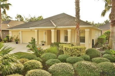 Ormond Beach Single Family Home For Sale: 533 Aldenham Ln