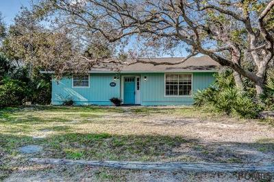 Flagler Beach Single Family Home For Sale: 1844 Flagler Ave S